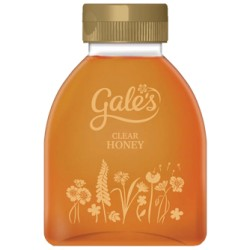 Gales Squeezy Honey